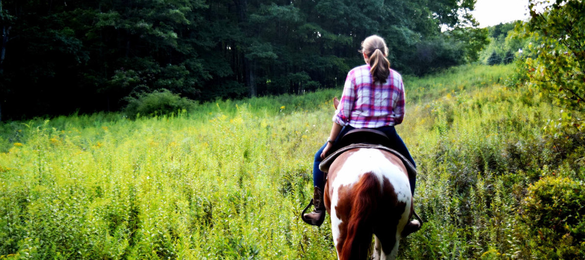 Ride through meadow on mountain laurel riding stable group trail ride