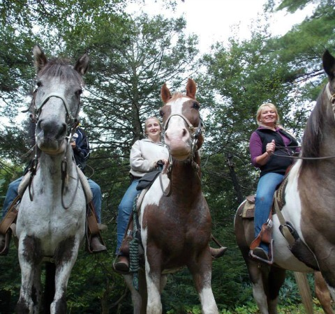 Mountain creek rides, Horses & staff lined up along trail