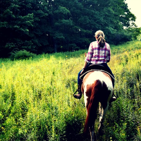 Mountain laurel riding stables, group trail rides