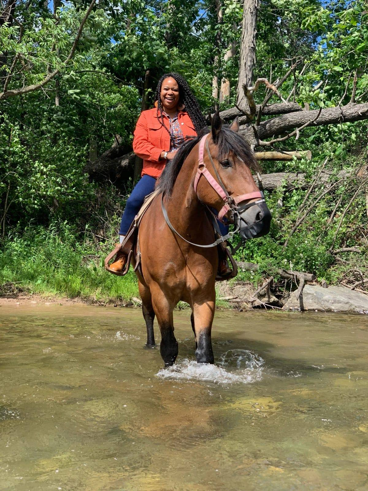 A horse and rider in the creek