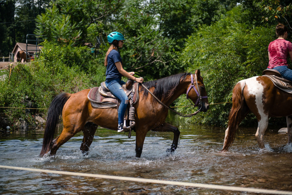 Horseback Riding for Beginners