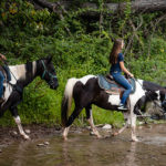 group horseback riding in the Pocono Mountains